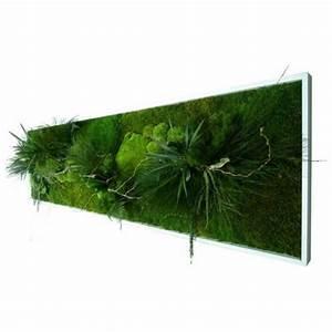 Tableau Végétal Mural : tableaux v g taux stabilis s lichen 49 00 ~ Premium-room.com Idées de Décoration