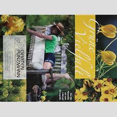 Baumschule, Gartenmarkt, Pflanzen, Gartenmöbel Und Mehr
