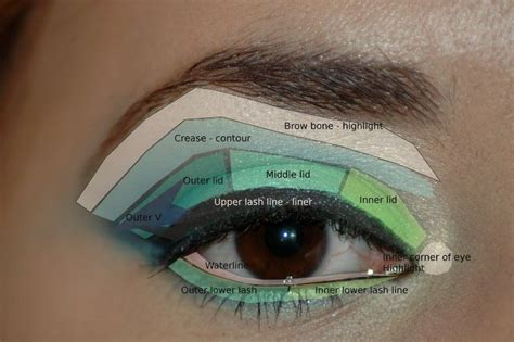 Diagram For Eye Makeup by Eyeshadow Application Is To Do