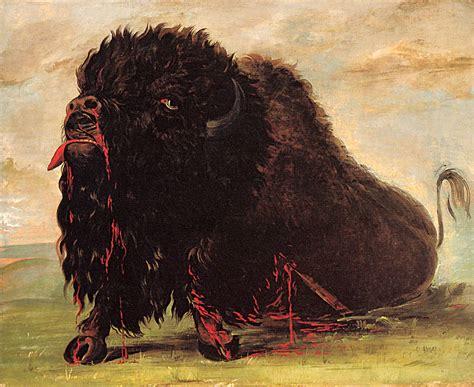 lewis clark   american bison frances hunters