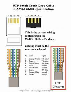 Ethernet Ip Wiring Diagram Top Security Camera Wire Color