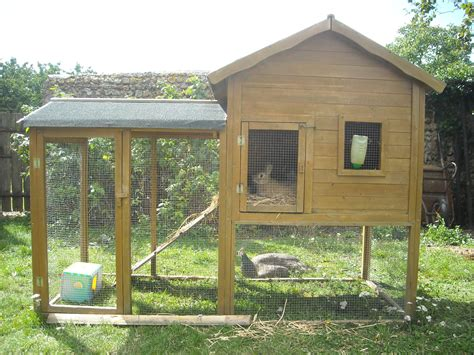 cabane pour lapin exterieur enclos lapins nains le de lafermeducoudray