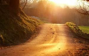Wallpaper, Sunlight, Landscape, Forest, Hill, Nature, Grass, Sky, Sunrise, Evening, Morning