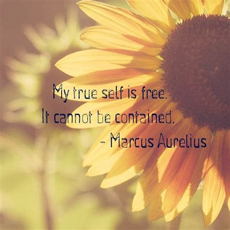 Quotes True Self Quotesgram