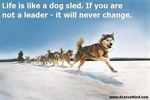 Life is like a ... Dog Sledding Quotes