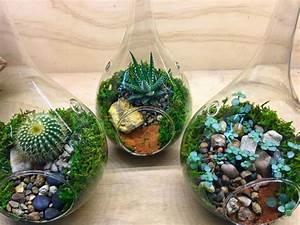 Terrarium Plante Deco : terrarium plantes grasses 40 superbes id es en photos ~ Dode.kayakingforconservation.com Idées de Décoration