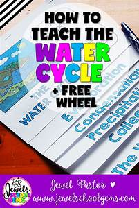 The Water Cycle Archives