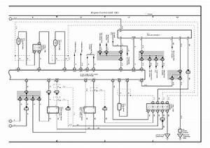 1987 Toyota Mr2 Belt Diagram  1987  Free Engine Image For User Manual Download