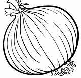 Onion Coloring Vegetable Cartoon sketch template