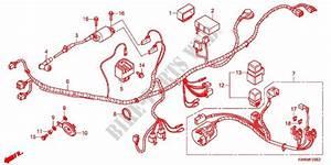 Wire Harness  Afp110mcse  Afp110mcre  For Honda Wave Dash