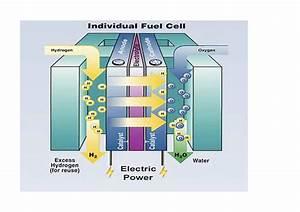 Fonctionnement Pile à Combustible : pile combustible l nergie du futur blog de imen belgacem ~ Medecine-chirurgie-esthetiques.com Avis de Voitures