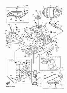 2004 Yamaha Yzf R6 Wiring Diagram  Diagram  Auto Wiring Diagram