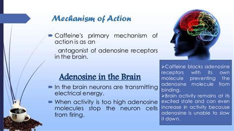 Caffeine presentation