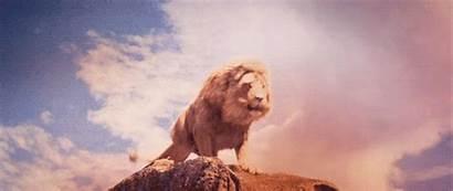 Aslan Narnia Move Roar Lions King Chronicles