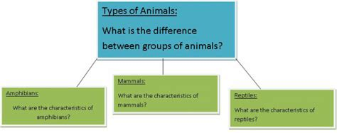 concept map types  animals