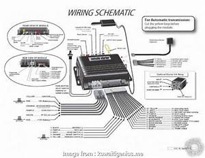 Avital Remote Starter Wiring Diagram Brilliant Auto Wiring Diagrams Spectacular Of Bully  Remote