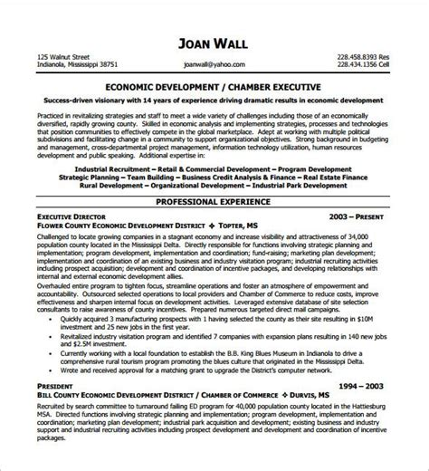Executive Resume Templates Word by Non Profit Executive Resume Template Executive Resume