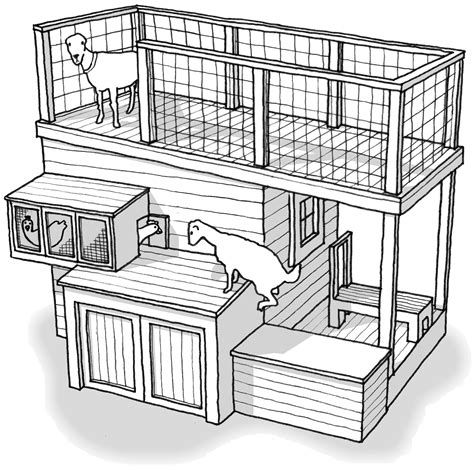 goat shed design goat justice league the shed