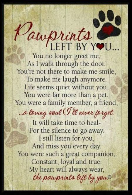 sympathy quotes  loss  dog image quotes