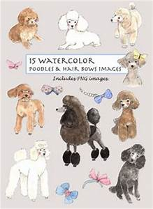 Andis Poodle Chart Modern Poodle Grooming Chart Illustration Print Poodle