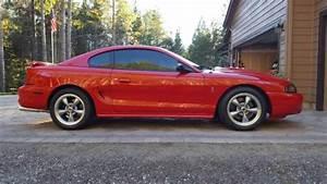 94 Mustang SVT Cobra for sale: photos, technical specifications, description