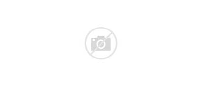 Chicago Park Millennium Gov Parks Slideshow Covid