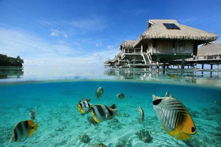 Travel Spotlight Underwater Bungalow In Bora Bora