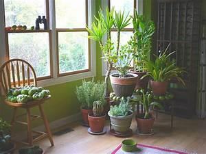 Plante Verte D Appartement : 9 plantes d int rieur qui purifient l air et qui sont tr s ~ Premium-room.com Idées de Décoration