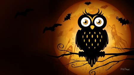 Creepy Owl Wallpapers by Owl Moon Birds Animals Background Wallpapers