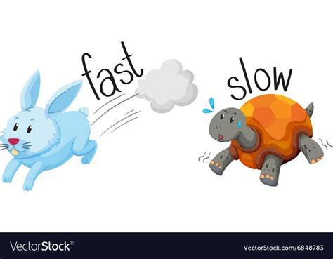 rabbit runs fast  turtle runs slow royalty  vector