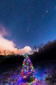 Christmas Tree Snowy Night Sky