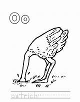 Ostrich Coloring Oboe Letter Pages Printable Worksheet Spirituality Getcolorings Alphabet Worksheets Popular Worksheeto sketch template