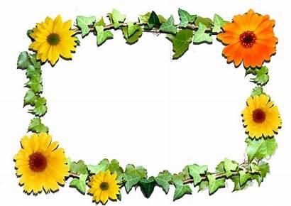 Frame Flowers Frames Clipart Transparent Yopriceville Previous