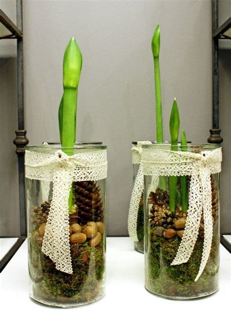 Amaryllis Im Glas Dekorieren by Die Besten 25 Glas Bodenvase Dekorieren Ideen Auf