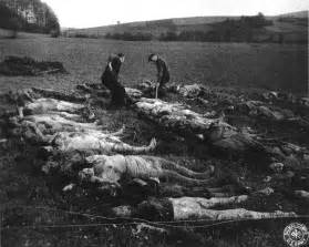 file mass grave germany 1945 hirzenhain 3 png