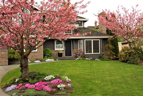 trees for the front yard 37 inspiring front yard landscaping ideas page 2 of 3