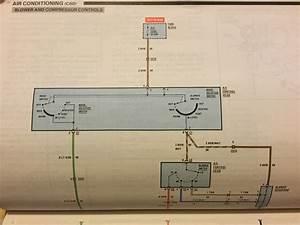 Monte Carlo Fan Wiring Diagram