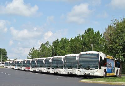 tallahassee daily photo buses   row