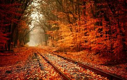 Desktop Autumn Leaves Wallpapers Cool