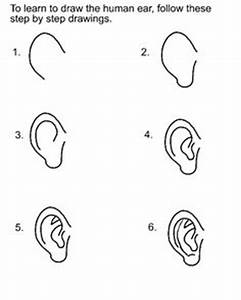 1000+ images about Drawing Tips - The Ear on Pinterest ...