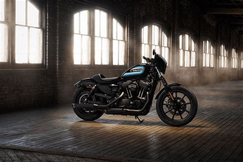Forty-eight Special & Iron 1200 Sportster