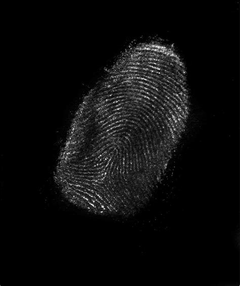 best of 15 fingerprint wallpapers our collection
