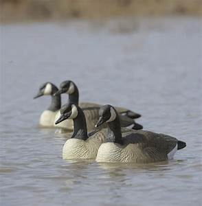 New Standard Size Floating Goose Decoys From Final