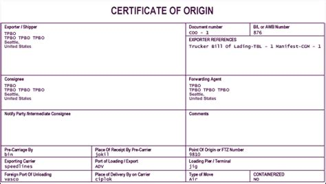 8 certificate of origin template word fancy resume