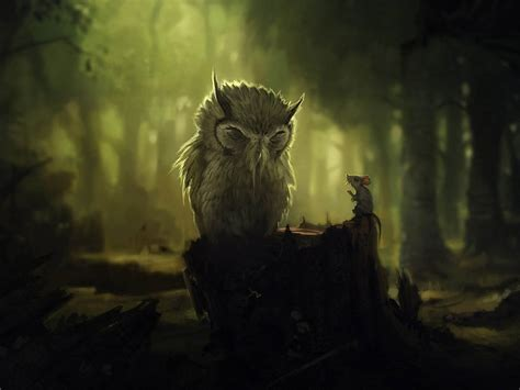 Background Owl Wallpapers by Wallpaper Owl