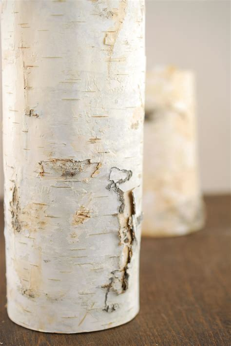 natural birch tree branch candle holders