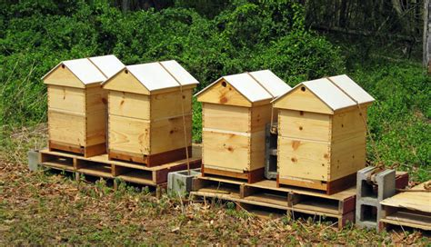 how to build your own bookshelf the best ventilated gabled roof honey bee suite