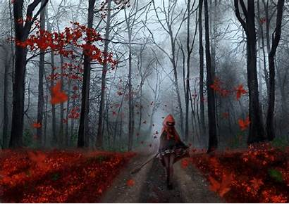 Forest Autumn Anime Tree Leaf Road Chaperon
