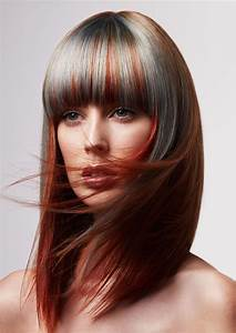 Red Brown Hair With Silver Highlights New Hair Ideas