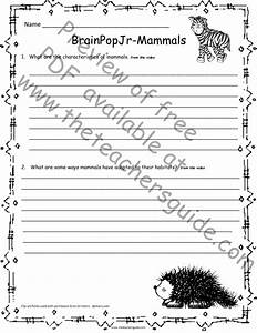 Made By Teachers  Animal Adaptation Lesson Plans 4th Grade